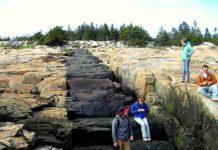 Intrusive Basalt Dike, Acadia National Park