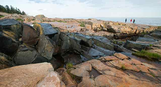 Intrusive Basalt Dike, Acadia National Park