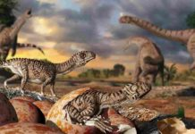 Illustration of Massospondylus eggs and young dinosaurs