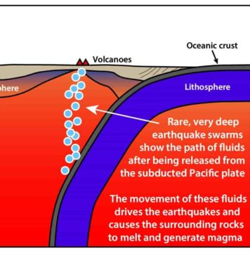 Deep earthquake swarms show the path of fluids released from the subducted Pacific Plate.