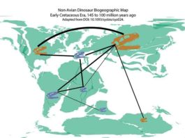 During the Early Cretaceous period (145-100 million years ago), nonavian dinosaurs likely migrated between Africa and Europe. Image adapted from research figure originally published in Systematic Biology