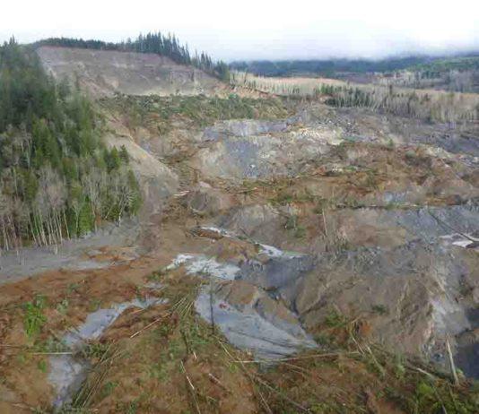 The March 22, 2014 SR530 landslide near Oso, Washington