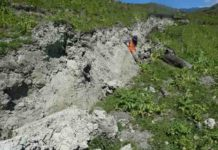 A fresh surface rupture of the Kekerengu fault, taken 4 days after the Kaikoura earthquake, with lead author Jesse Kearse leaning next to a curved slickenline (the subject of this article). Photo credit - Professor Tim Little (Victoria University of Wellington).
