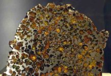 An example of a Pallasite meteorite (from the Esquel fall) on display in the Vale Inco Limited Gallery of Minerals at the Royal Ontario Museum.