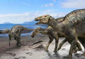 A reconstruction of Kamuysaurus japonicus. Credit: Kobayashi Y., et al, Scientific Reports, September 5, 2019