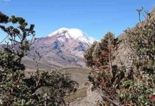 The volcano Chimborazo, Ecuador, that Alexander von Humboldt surveyed in 1802. Photo: Spyros Theodoridis/CMEC
