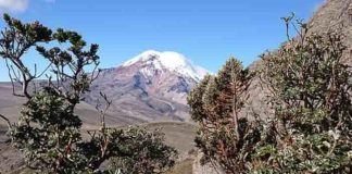 The volcano Chimborazo, Ecuador, that Alexander von Humboldt surveyed in 1802. Photo: Spyros Theodoridis/CMEC