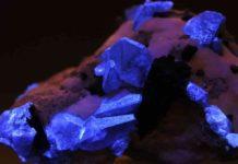 Benitoite crystals under UV light