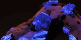 Benitoite crystals under UV light