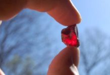 Garnet. Credit: Cherokee Ruby Mine