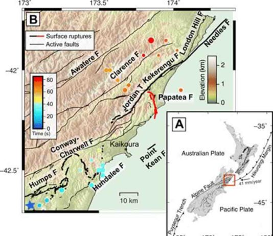 Fig. 1 Map of the 2016 Kaikōura earthquake and surrounding area. (A) Transpressional tectonic setting of the northeastern South Island of New Zealand. (B) Map of surface ruptures from the 2016 Mw 7.8 Kaikōura earthquake, shown in bold black lines with the Papatea fault in red (8, 28). Dots represent scaled relative energy release from back-projection results (15) and are colored by time since rupture onset. Mapped active faults that did not rupture during the Kaikōura event are indicated by thin black lines (28). Credit: Science Advances 02 Oct 2019: Vol. 5, no. 10, eaax5703, DOI: 10.1126/sciadv.aax5703
