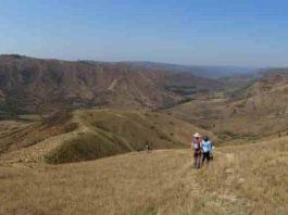 Researchers doing fieldwork in KwaZulu-Natal, South Africa. Credit: Stuart Gilfillan