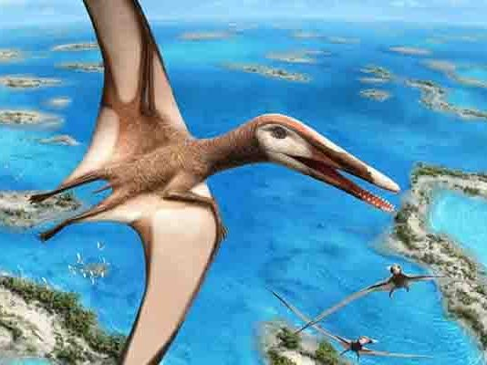New research is shedding light on how and where ancient flying reptiles called pterosaurs lived. Credit: Julius Csotonyi