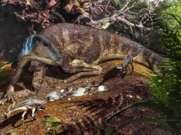 Artist's depiction of an ornithopod dinosaur tending its nest.