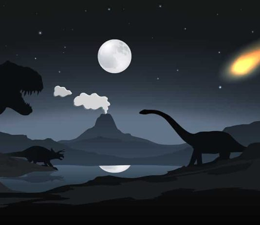 Illustrated scene of dinosaurs and asteroid.