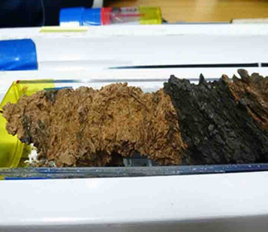 Core samples from the fault zone of the Japan Trench were recovered by the JFAST project and analyzed for evidence of past large earthquakes.