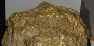 Alaska Centennial Nugget : Largest Gold Nugget Ever Found in Alaska