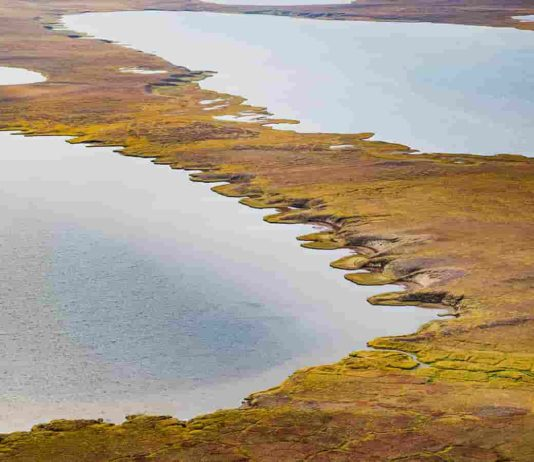 The image shows a thermokarst lake in Alaska. Thermokarst lakes form in the Arctic when permafrost thaws. Credit: NASA/JPL-Caltech