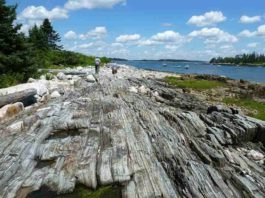 Research suggest that rocks colliding inside fault zones, like this one in Maine, may contribute to damaging high-frequency earthquake vibrations. Credit: Julia Carr