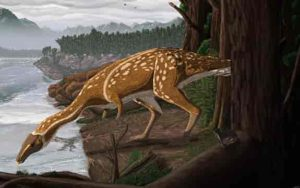 An artist's impression of what an elaphrosaur may have looked like. Credit: Ruairidh Duncan