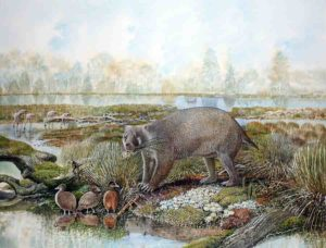 Life reconstruction of the giant wombat relative Mukupirna nambensis on the shores of Lake Pinpa 25 million years ago. Also shown are stiff-tailed ducks (foreground) and flamingos (background), the remains of which are known from the same fossil deposit. Credit: Painting by Peter Schouten.