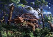 Illustration of Borealopelta markmitchelli dinosaur by Julius Csotonyi. Credit: © Royal Tyrrell Museum of Palaeontology