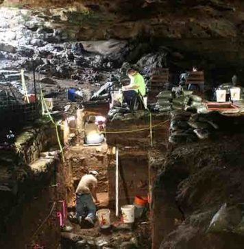 Workers excavating Hall's Cave in Central Texas. Image Courtesy of Michael Waters