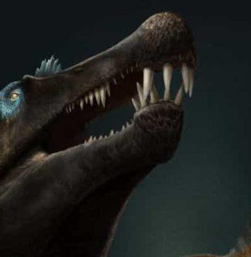 Artist's impression of Spinosaurus. Credit: Davide Bonadonna