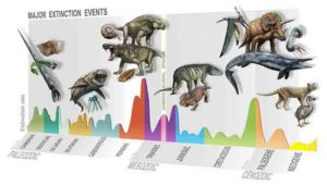 Summary of major extinction events through time, highlighting the new, Carnian Pluvial Episode at 233 million years ago. Credit: D. Bonadonna/ MUSE, Trento