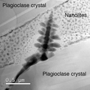 Nanolite 'snow' surrounding an iron oxide microlite 'Christmas tree'. Even these small 50 nm spheres are actually made up of even smaller nanolites aggregated into clumps. Christmas has come early this year for these researchers. Credit: Brooker/Griffiths/Heard/Cherns