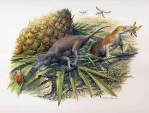 Reconstruction of Morganucodon (left) and Kuehneotherium (right) hunting in Early Jurassic Wales 200 million years ago. Credit: Original painting by John Sibbick, 2013. Copyright: Pam Gill