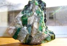 Brazilian emeralds in a quartz-pegmatite matrix. (Photo courtesy of Madereugeneandrew/Wikimedia Commons)