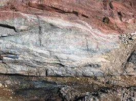 The outcrop of the pseudotachylyte-bearing fault zone in pelagic sedimentary rocks.
