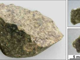 Fragments of the Oued Awlitis 001 meteorites acquired by the Ludovic-Ferrière. Credit: University of Manchester