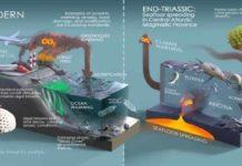 End Triassic vs Anthropocene