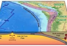 Map of the Cascadia subduction zone. Credit: Public Domain