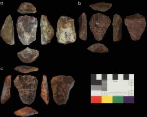 Photos of Nubian Levallois cores associated with Neanderthal fossils. Credit © UCL, Institute of Archaeology & courtesy of the Penn Museum, University of Pennsylvania