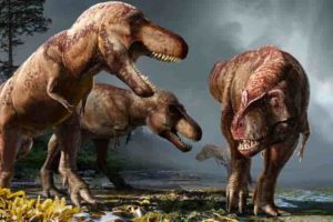 Over approximately 2.5 million years, North America likely hosted 2.5 billion Tyrannosaurus rexes, a minuscule proportion of which have been dug up and studied by paleontologists, according to a UC Berkeley study. (Image by Julius Csotonyi, courtesy of Science magazine)