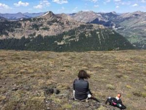 Karen Heeter overlooks Yellowstone from Republic Pass on a tree coring excursion in July 2018. Credit: Grant L. Harley