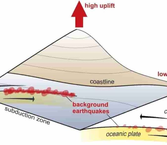 In the time between mega-earthquakes, smaller earthquakes continuously occur between oceanic and continental plates (background earthquakes). Where a lot of energy is released through these earthquakes, we observe coastal mountains that rise faster. In contrast, slow-uplifting coastal areas coincide with fewer background earthquakes. Credit: University of Tübingen
