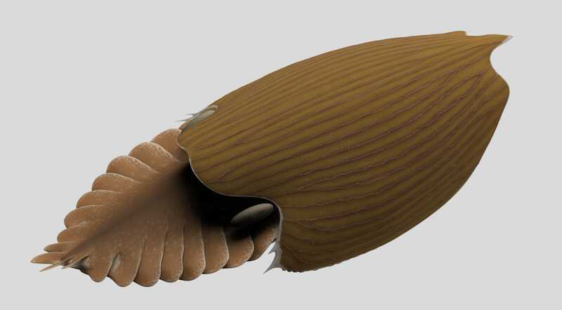 Titanokorys gainesi reconstruction. Illustration by Lars Fields, © Royal Ontario Museum.