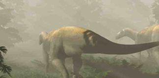 Life reconstruction of herbivorous dinosaurs based on 220-million-year-old fossil footprints from Ipswich, Queensland, Australia. (Image credit: Anthony Romilio)